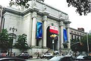 博物館 アメリカ自然史博物館